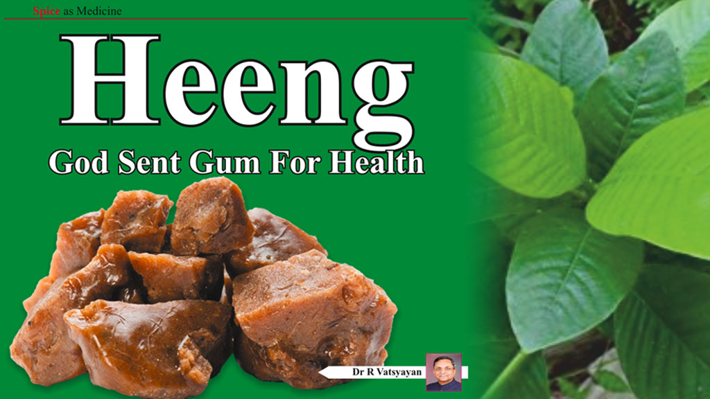 Heeng - God sent gum for health