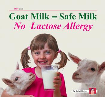 Goat Milk = Safe Milk , No  Lactose Allergy